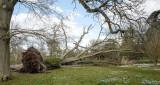 Doris Strikes in Bramley