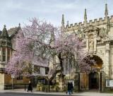 University Church of St Mary the Virgin - Oxford