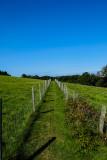 Tapley Park - Walk to the estuary view