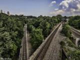 Train Ave