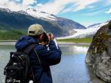 juneau_ketchkan_wildlife_vancouver