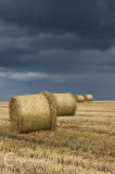 Hay bales and a darkening sky