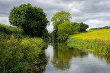 Grand Western canal near Halberton in Devon