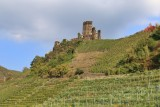 Beilstein. Metternich Castle