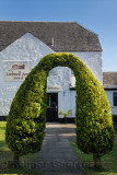 Cedar bushes trained into a topiary archway to Lochnell Arms Hotel in North Connel Scotland UK
