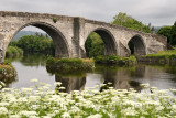 Medieval stone arches of Old Stirling Bridge over the River Forth with Queen Annes Lace on riverbank and Wallace Monument Stirli