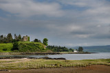 Salt marsh grass with Sea Thrift on shore of Sound of Mull with 13th century ruin of Aros Castle near Salem Isle of Mull Inner H