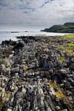 Flipped sedimentary rock layers at Sandeels Bay Atlantic Ocean at Isle of Iona Inner Hebrides Scotland UK