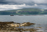 Fishnish net pen marine farm on the Sound of Mull from the Isle of Mull Scotland UK