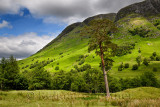 Meall an t-Suidhe mountain north of Ben Nevis at Glen Nevis valley Scottish Highlands Scotland UK