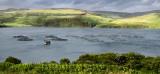 Panorama of Salmon fish farm net pens on Loch Harport with evening sun on Beinn Dhubh from Portnalong Isle of Skye Scotland UK
