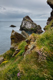 Bow Fiddle Rock quartzite sea arch at rocky cliff with grass and flowers at Portknockie on the North Sea Atlantic ocean Scotland