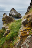 Bow Fiddle Rock quartzite sea arch and rocks on cliff with flowers at Portknockie on the North Sea Atlantic ocean Scotland UK