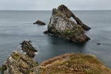 Bow Fiddle Rock eroded quartzite sea arch at rocky cliff with seagulls at Portknockie on the North Sea Atlantic ocean Scotland U