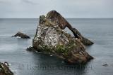 Bow Fiddle Rock quartzite sea arch with seagulls in Moray Firth North Sea at Portknockie Scotland UK