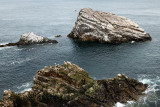 Eroded quartzite sea rocks beside Bow Fiddle Rock with seagulls and Cormorants in Moray Firth North Sea at Portknockie Scotland