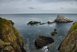 Sea rocks at coastal cliffs beside Bow Fiddle Rock with seagulls and Cormorants in Moray Firth North Sea at Portknockie Scotland