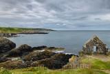 Orange Lichen on weathered quartzite with Clifftop Ruin wall on coast of North Sea Moray Firth at Portsoy Scotland UK