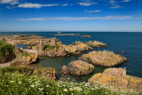 Rock islands at Boddam Harbour North Sea with orange lichen and Queen Annes Lace on shore Boddam Aberdeenshire Scotland UK