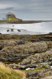 Lindisfarne Castle with scaffolding from Steel End of Holy Island with fishing boats at low tide Berwick-upon-Tweed England UK