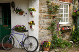 Stone house with streetside garden and bicycle at front door Holy Island of Lindisfarne Northumberland England UK