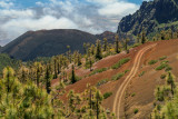 Parc National de Teide