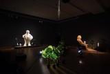 "Stefan Tcherepnin: The Mad Masters"" Exhibit - 4277"