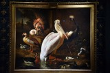 A Pelican and other Birds Near a Pool. The Floating Feather (1680) - Melchior d'Hondecoeter - 5265