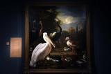 Birds in a Park (1680) - Melchior d'Hondecoeter - 5269