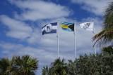 HMC flags