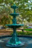Savannah 20180219_0393.jpg