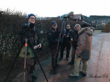 Siberian accentor - New Years day twitchers