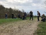 Subalpine Warbler - twitchers