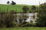 Small lake on local farm