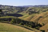 Arawata Hills