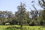 Tarago Reservoir Park
