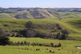 Jumbunna Countryside