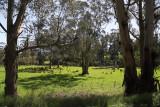 Tarago Reservoir Parklands