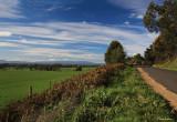 Roadside View