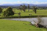 Yarragon Countryside