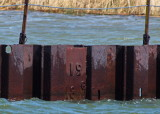 Shipyards Dry Dock Level May 7, 2017