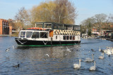 85:365 Windsor's Swanee River