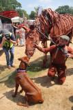 4 ~ meeting the warhorse
