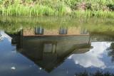 177:365Basingstoke Canal Reflection