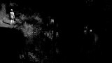 280:365beyond the shadows