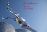 353:365My Christmas Greeting