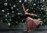 355:365Felicia's Festive Stretch
