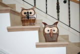 a pair of owls bandsaw boxes