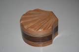 sea shell bandsaw box