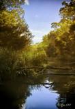 Blackburn Lake